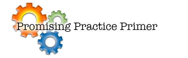 Promising Practices Primer Heading and Graphic